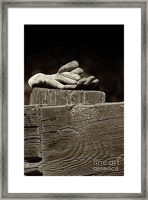 Taking A Break Framed Print by Sandra Bronstein