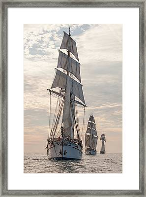Parade Of Ships Framed Print by Cliff Wassmann