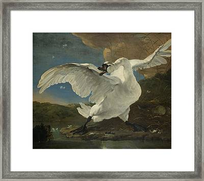 The Threatened Swan Framed Print by Jan Asselijn