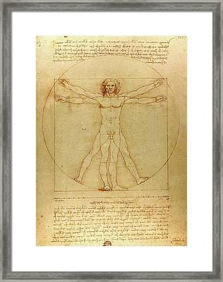 The Vitruvian Man Framed Print by Leonardo da Vinci