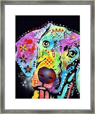 Thoughtful Weimaraner Framed Print by Dean Russo