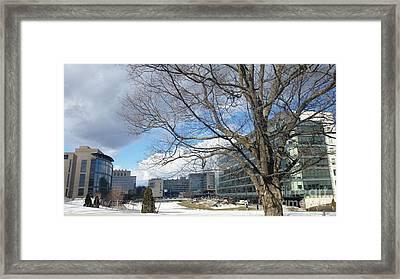 Umass Medical Center Framed Print by Rose Wang