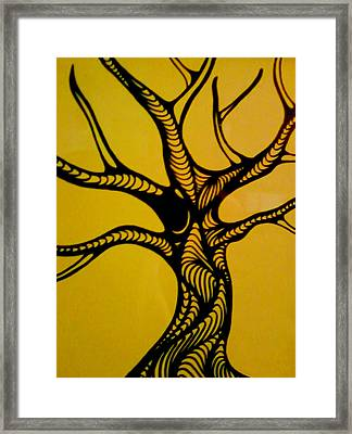 Untitled Framed Print by Jeff DOttavio