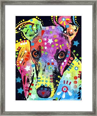 Whippet Framed Print by Dean Russo