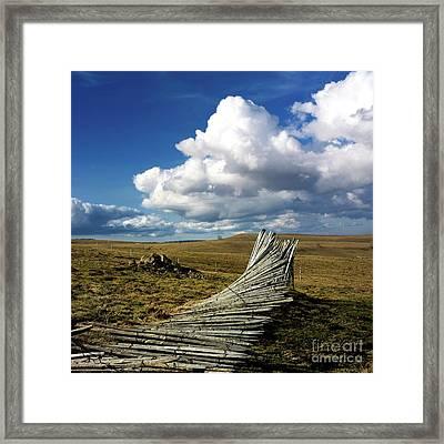 Wooden Posts Framed Print by Bernard Jaubert