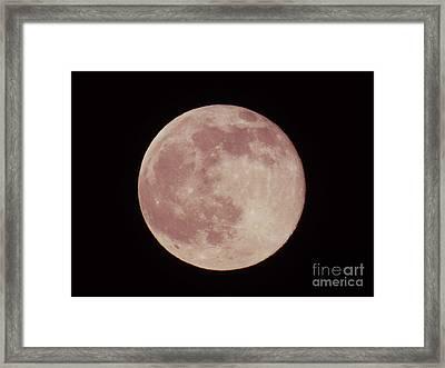 2016 Summer Solstice Strawberry Moon  Framed Print by D Hackett