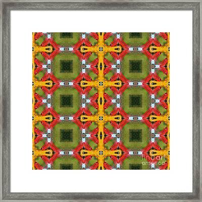 Kaleidoscopic Ornaments Framed Print by Miroslav Nemecek