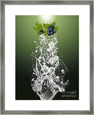 Blueberry Splash Framed Print by Marvin Blaine