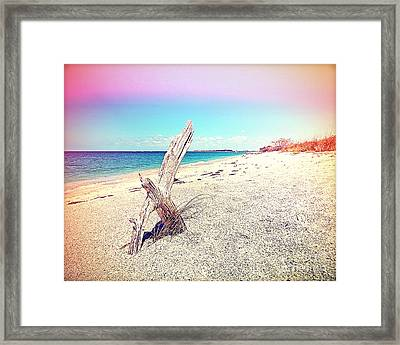 Caya Costa Driftwood Framed Print by Chris Andruskiewicz