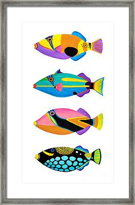Collection Of Trigger Fishes Framed Print by Opas Chotiphantawanon