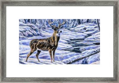 Deer Framed Print by Marvin Blaine