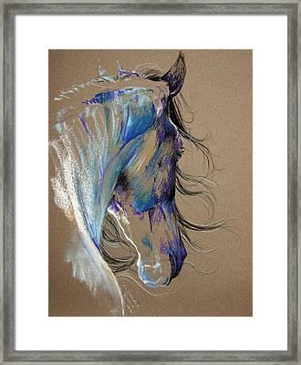 Fresian Horse Framed Print by Paulina Stasikowska