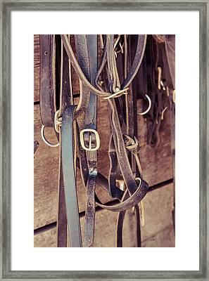 Horse Tack Framed Print by Erin Cadigan