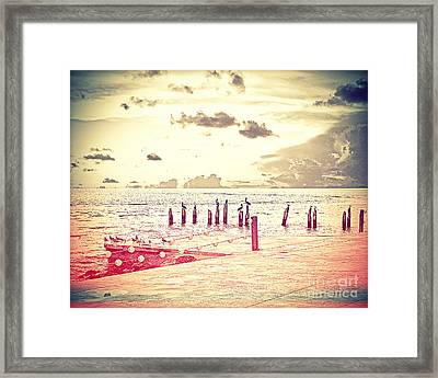 Key West Pelicans Framed Print by Chris Andruskiewicz
