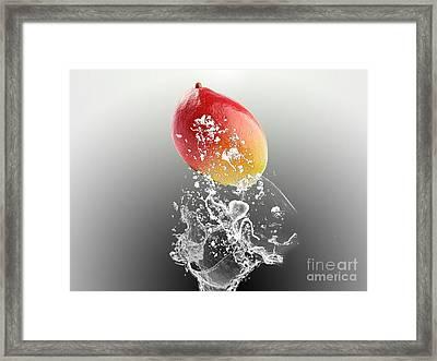 Mango Splash Framed Print by Marvin Blaine