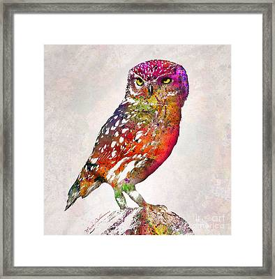 Owl  Framed Print by Mark Ashkenazi