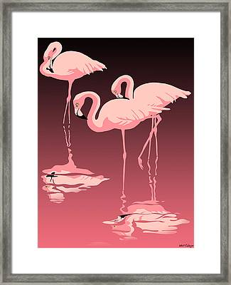 3 Pink Flamingos Framed Print by Walt Curlee