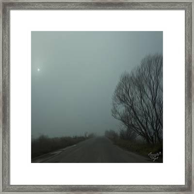Prievidza Framed Print by Renata Vogl