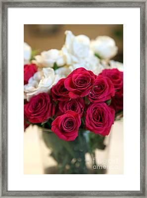 Roses Framed Print by Amanda Barcon