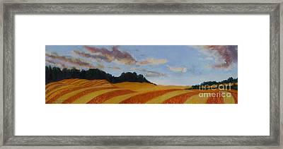 Wonderland Farm Framed Print by Lucinda  Hansen
