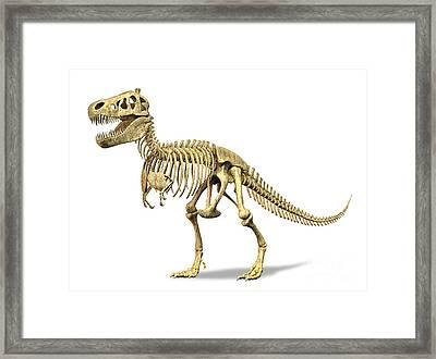 3d Rendering Of A Tyrannosaurus Rex Framed Print by Leonello Calvetti