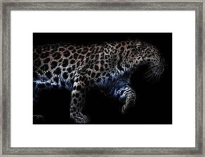 Amur Leopard Framed Print by Martin Newman