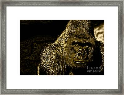 Ape Collection Framed Print by Marvin Blaine