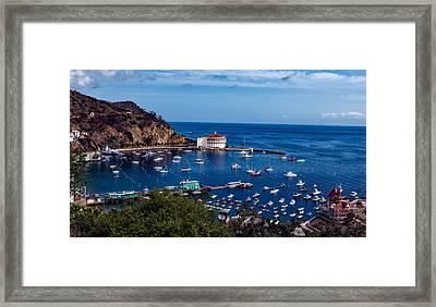 Beautiful Catalina Island Framed Print by Mountain Dreams