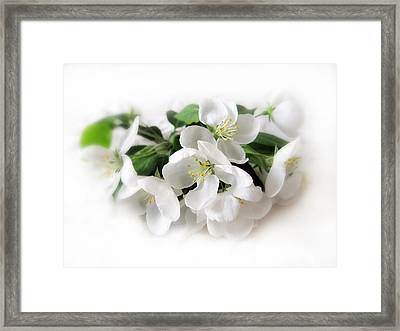 Blossom Framed Print by Jessica Jenney