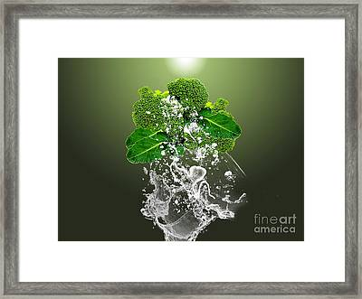 Broccoli Splash Framed Print by Marvin Blaine