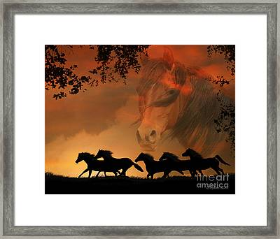 4-ever Free Framed Print by Stephanie Laird
