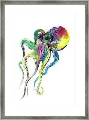 Octopus Framed Print by Suren Nersisyan