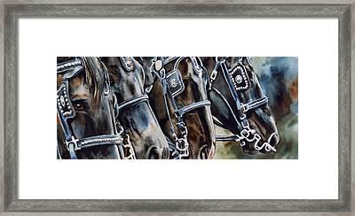 4 Shires Framed Print by Nadi Spencer