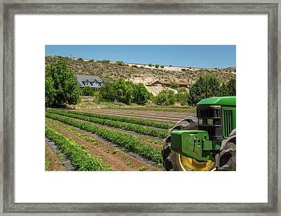 Urban Farming Framed Print by Jon Manjeot