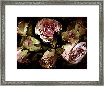 Vintage Rose Framed Print by Jessica Jenney