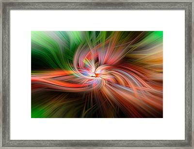 4160 Framed Print by Tom Weisbrook