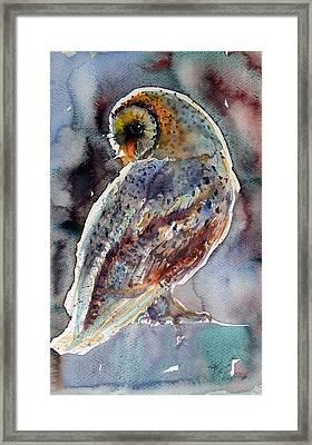 Barn Owl Framed Print by Kovacs Anna Brigitta