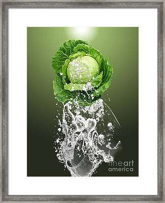 Cabbage Splash Framed Print by Marvin Blaine