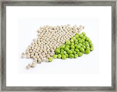 Peas Framed Print by Nailia Schwarz