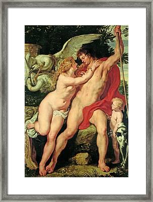Venus And Adonis Framed Print by Peter Paul Rubens