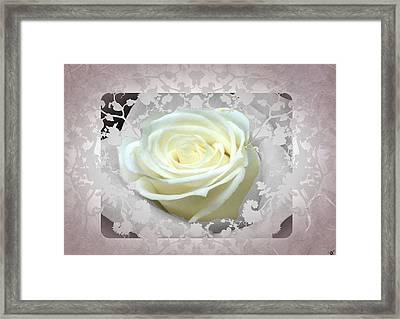 Wedding Rose Collection  Framed Print by Debra     Vatalaro