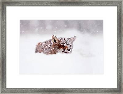 50 Shades Of White And A Touch Of Red Framed Print by Roeselien Raimond