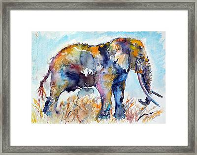 Colorful Elephant Framed Print by Kovacs Anna Brigitta