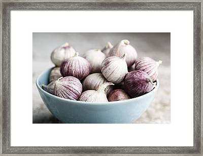 Garlic Framed Print by Nailia Schwarz