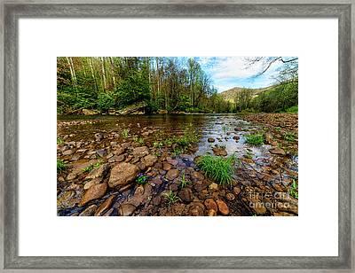 Williams River Spring Framed Print by Thomas R Fletcher