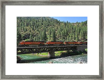 7215 Framed Print by Donna Kennedy