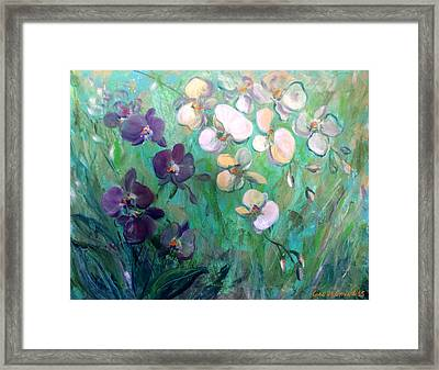 Orchids Framed Print by Gina De Gorna