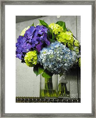 #935 D1002 Fascinating Bouquet Of Hydrangea Blooms Framed Print by Robin Lee Mccarthy Photography