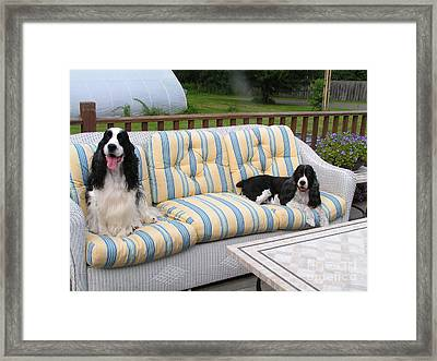 #940 D1081 Farmer Browns Separate But Always Together Framed Print by Robin Lee Mccarthy Photography