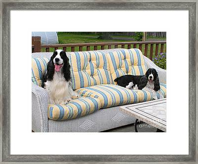 #940 D1083 Farmer Browns Separate But Always Together Framed Print by Robin Lee Mccarthy Photography